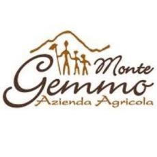 Monte Gemmo