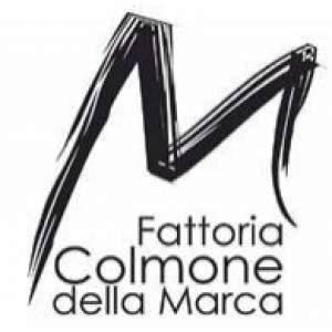 Fattoria Colmone della Marca the excellence of Italian wines