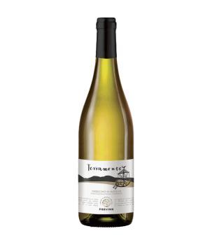 TERRAMONTE Verdicchio di Matelica DOC cantine Provima vino bianco CRU