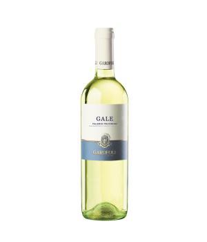 GALE Falerio Pecorino Doc Garofoli Vino bianco da bere giovane