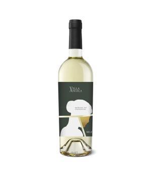 VILLA ANGELA Velenosi Passerina Marche IGT vino bianco del Piceno