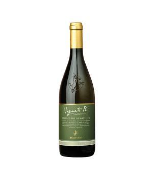 VIGNETI B 2019 Belisario Verdicchio di Matelica DOC organic white wine
