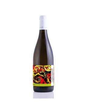 CHAMAELEON Marche IGT Orange Bastianelli vino bianco macerato