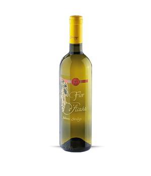 FIOR D'ACASIA Strologo Silvano white wine Marche IGT Incrocio Bruni 54