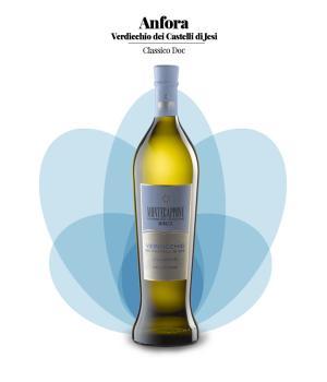 VERDICCHIO in anfora Montecappone Vino bianco Castelli di JESI DOC