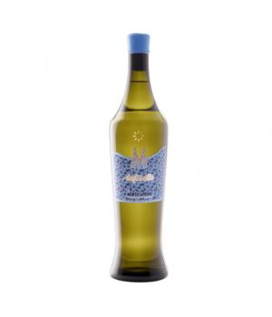 VERDICCHIO anforetta Montecappone Vino bianco Castelli di JESI DOC