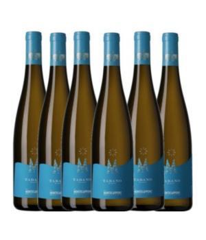 6 bottles TABANO Montecappone Marche IGT
