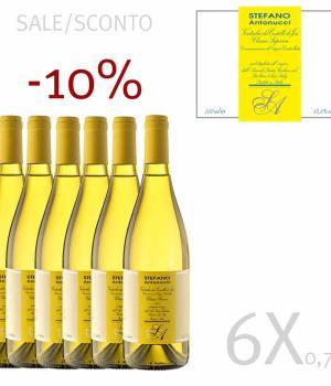 6 bottles white wine STEFANO ANTONUCCI Verdicchio di Jesi DOC