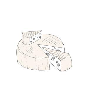 PECORINO semistagionato formaggio tipico marchigiano