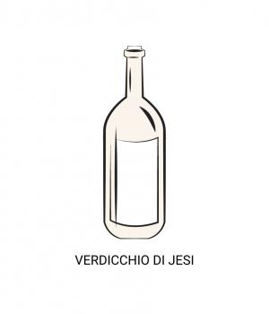 VERDICCHIO di JESI from native grapes, the most awarded white wine in Italy