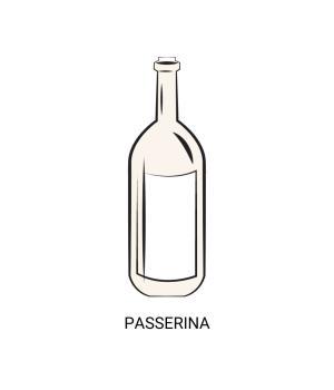 Passerina Marche IGT white wine from Piceno