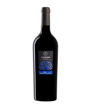 LACRIMA di MORRO DOC Velenosi vini prestigiosa cantina delle Marche