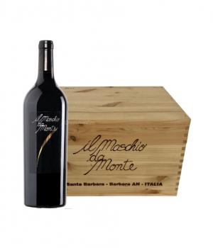 6 bottiglie il MASCHIO del MONTE Santa Barbara Piceno DOC vino rosso fermo