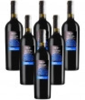 6 bottles Lacrima di Morro DOC 2018 Velenosi italian red wine most prestigious