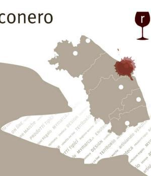 i ROSSI della MARCA ANCONITANA Selezione 6 bottiglie vini rossi del Conero