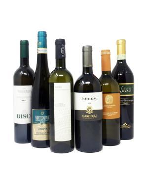 i VERDICCHI delle MARCHE 6 vini bianchi ottimo rapporto qualità / prezzo