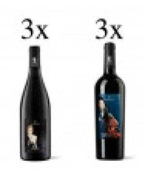 6 bottiglie vini Bastianelli  degustazione 3 Quiete + 3 Chiave di volta