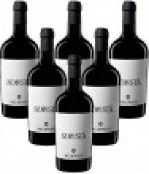 SOLESTA' 6 bottles Rosso Piceno Superiore DOC Velenosi