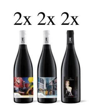 Mix di 6 bottiglie vini cantina Bastianelli.... il TOP