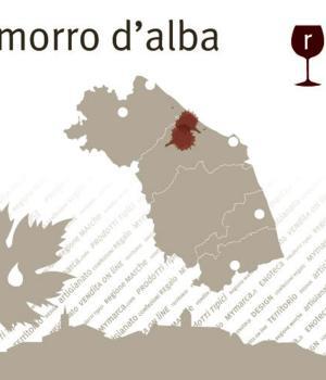 LACRIMA di MORRO selezione 6 vini da vitigno autoctono antico