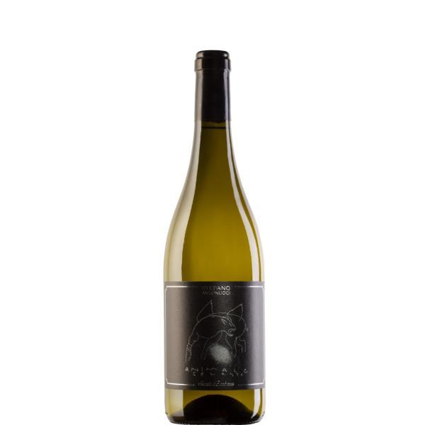ANIMALE CELESTE Santa Barbara vino Sauvignon Blanc Marche IGT