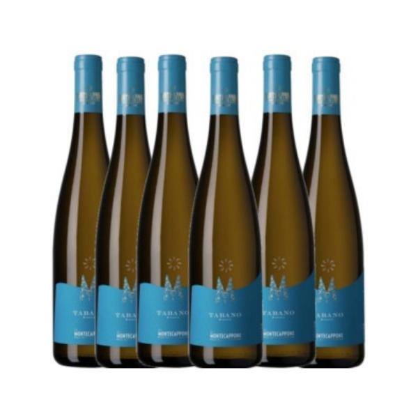 6 bottiglie TABANO Montecappone Marche IGT vino bianco x frutti di mare